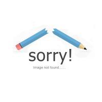 Moorish Prescription Green (12 Month) Contact Lenses