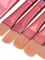 Makeup Brushes SVP031546-4x60-80.