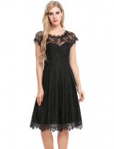 Black Floral Lace Hollow Out A-Line Pleated Hem Dress