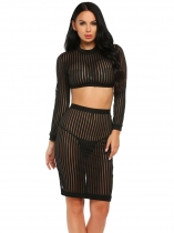 Black Long Sleeve Sheer Striped Crop Top and Bodycon Skirt Set