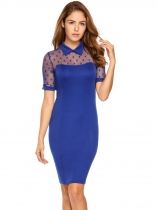 Blue Vintage Style Doll Collar Sheer Mesh Bodycon Dress
