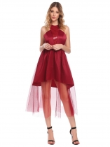 Wine red Women Casual O-Neck Sleeveless Mesh See Through A-Line Pleated Sexy Dress