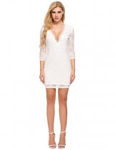 White Plunge Neck Half Sleeve Lace Mini Pencil Dress