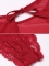 Sexy Lingerie AML006261_DR-9x60-80.