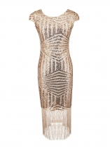 Pink 1920s Sequin Embellished Fringed Dress